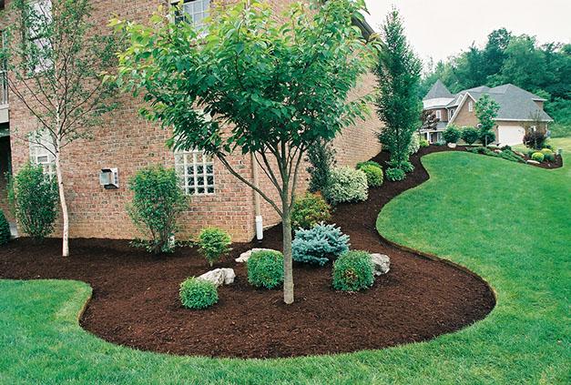 Tony S Landscaping Llc 262 930 8089 Home